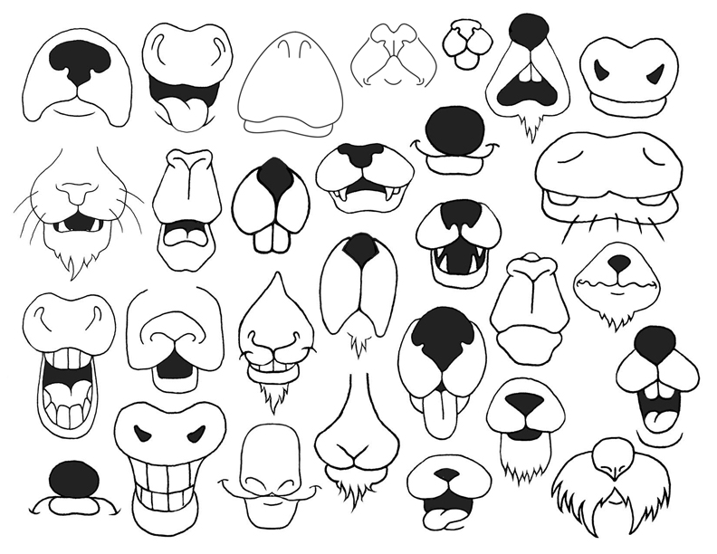 How to draw cartoon animal nose and mouths combined.