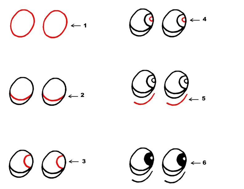How To Draw Step By Step Cartoons cartoon animal eyes step by