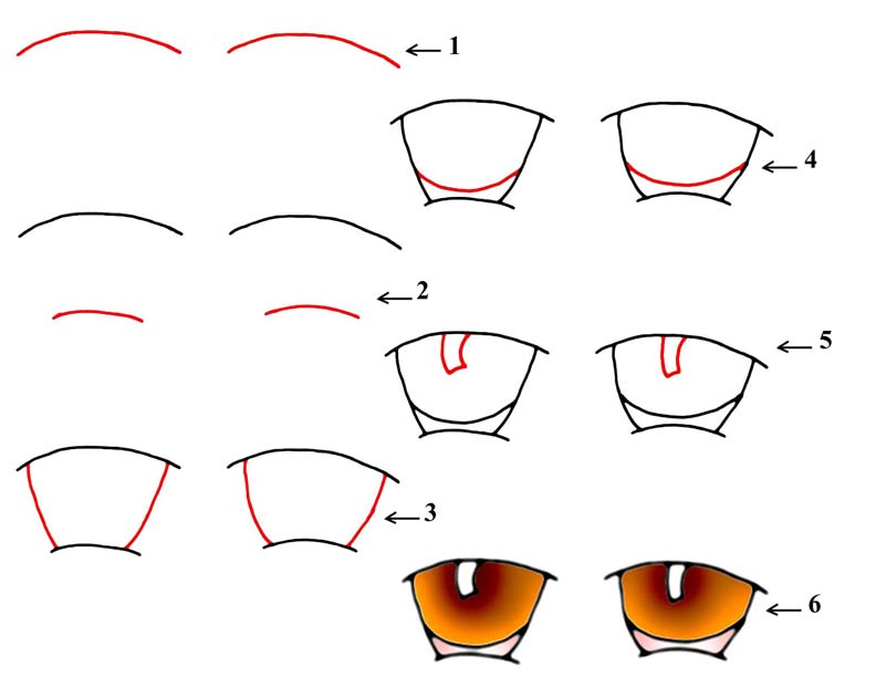 how to draw cartoon eyes cartoon animal eyes step by step instructions to draw