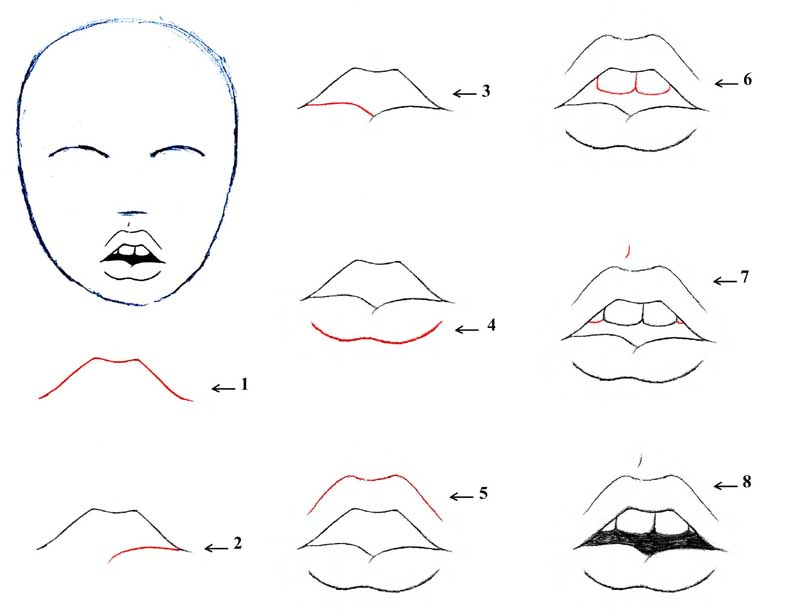 Lips Sketch Steps how to draw : open mou...